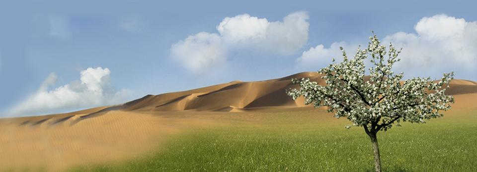 Mongolei-Hintergrund